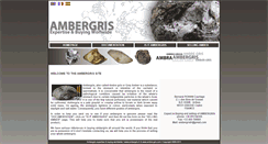 Preview of ambergris.fr